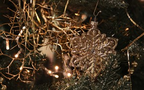 Picture winter, the rain, branches, holiday, toy, Christmas, New year, beads, tree, gold plated, needles, snowflake, …