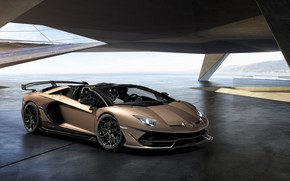 Picture machine, light, lights, Lamborghini, sports car, drives, roadster, Aventador, SVJ