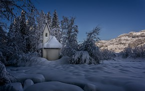 Picture winter, snow, trees, landscape, nature, Switzerland, Church, the bushes