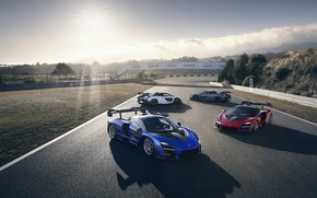 Picture McLaren, supercars, 2018, Senna, Victory Grey, Delta Red, Pure White, Kyanos Blue