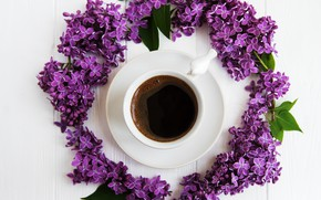 Picture coffee, branch, Cup, lilac
