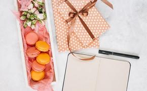 Picture cookies, handle, gifts, Notepad, dessert, Notebook, pen, presents