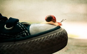 Picture macro, background, sport, shoes, sneakers, snail, sports, journey, toe