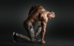 Picture pose, back, muscle, muscle, pose, athlete, biceps, bodybuilder, weight, biceps, bodybuilder