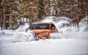 Picture snow, the snow, SUV, Seat, 2017, 4Drive, Ateca