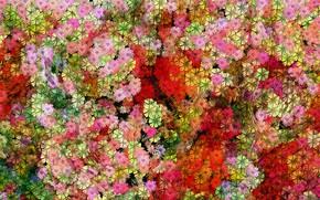 Picture Graphics, Tekstura, Flowers