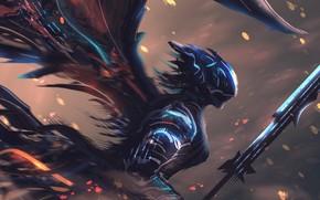 Picture wings, helmet, armor