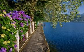 Picture spring, Italy, flowering, lake Orta, Orta San Giulio
