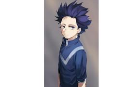 Picture guy, My Hero Academia, Boku No Hero Academy, My Hero Academy, Shinsou Hitoshi