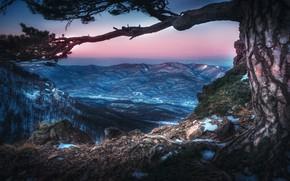 Picture winter, landscape, mountains, nature, tree, Tuapse, twilight