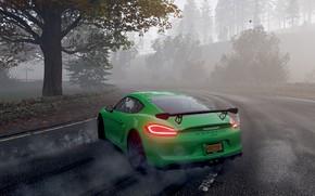 Picture Porsche, Drift, Porsche Cayman GT4, Forza Horizon 4