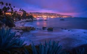 Picture lights, USA, ocean, night, Laguna Beach