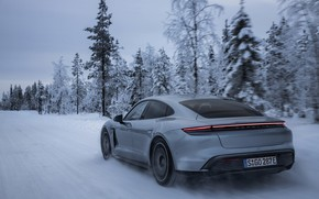 Picture snow, trees, grey, Porsche, ass, 2020, Taycan, Taycan 4S