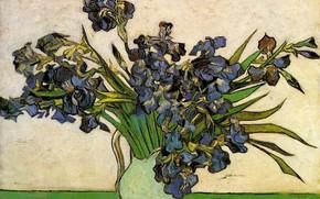 Picture flowers, vase, Still Life, Vincent van Gogh, Vase with Irises
