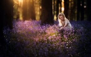 Picture forest, flowers, spring, girl