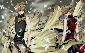Picture anime, petals, mask, art, glasses, guy, cloak, Tsubasa Reservoir Chronicles