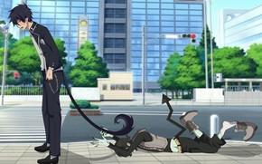 Picture the demon, Rin Okumura, Blue Exorcist, Ao No Exorcist