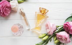 Picture bouquet, perfume, eustoma, bottles, Olena Rudo