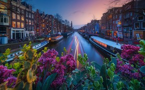 Picture light, the city, lights, Amsterdam, channel
