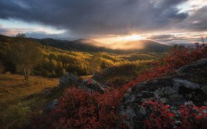 Picture autumn, forest, the sky, the sun, clouds, rays, mountains, stones, hills, foliage, beautifully