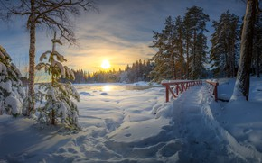 Picture winter, forest, snow, trees, sunset, traces, bridge, river, the snow, path, Finland, Finland, Langinkoski, Kotka, …
