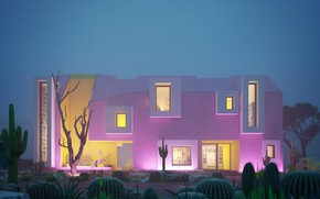 Picture trees, the building, cacti, architecture, SONORA HOUSE