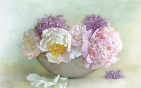 Picture flowers, background, bouquet, petals, art, pink, white, painting, lilac, peonies, vase, bowl, Allium