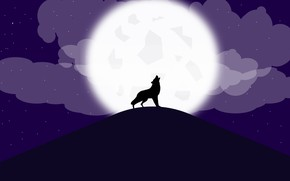 Picture stars, clouds, the moon, predator, the atmosphere, wolves, werewolf, forest, wolves, dark
