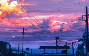 Wallpaper birds, posts, wire, the evening, traffic light, twilight, art, stop, the urban landscape, pink clouds, ...