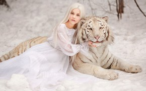 Picture winter, white, look, face, girl, snow, nature, face, tiger, pose, background, portrait, paws, dress, blonde, …