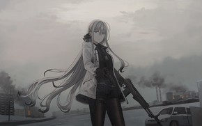 Picture girl, weapons, overcast