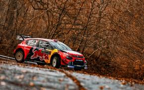 Picture Winter, Auto, Snow, Sport, Machine, Race, Citroen, Citroen, Car, WRC, Rally, Rally, Citroen С3, CITROEN …
