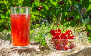 Picture summer, glass, light, branches, cherry, glass, berries, table, mood, foliage, garden, harvest, juice, fruit, red, …