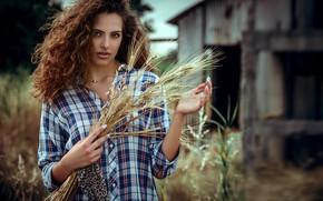 Picture look, nature, pose, model, portrait, makeup, hairstyle, ears, shirt, brown hair, beauty, bokeh, Manthos Tsakiridis