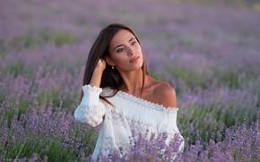 Picture girl, flowers, pose, mood, meadow, blouse, shoulder, lavender, Denis Lankin, Vitalina Afanasyev