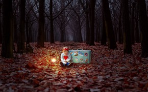 Picture autumn, forest, girl, suitcase