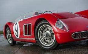 Picture prototype, body, 1957, Spider, Skoda, 1958, Skoda, Type 968, 1100 OHC