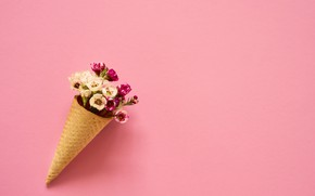 Picture flowers, background, pink, bouquet