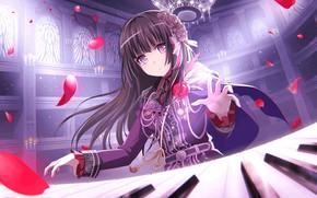 Picture girl, music, petals, keys, BanG Dream!