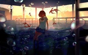 Picture girl, fish, sunset, smile, bubbles, anime, art, form, class, schoolgirl, under water, desks, goroku