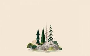 Picture stones, tree, island, spruce