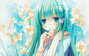Picture girl, flowers, spring, barrette, daffodils, Touhou, Art Kochi Have Done