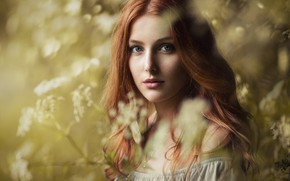 Picture look, girl, face, hair, bokeh, Siegart from Schlichting