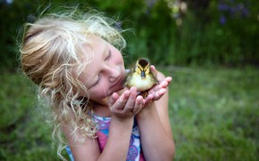 Picture nature, mood, girl, duck