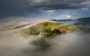 Picture clouds, landscape, mountains, nature, fog, hills, morning, forest, Carpathians
