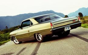Picture Chevrolet, Muscle, Nova