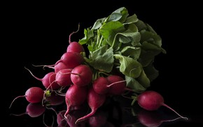 Picture black, Background, radishes
