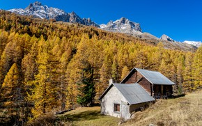 Picture autumn, forest, the sky, grass, the sun, trees, mountains, rocks, slope, houses