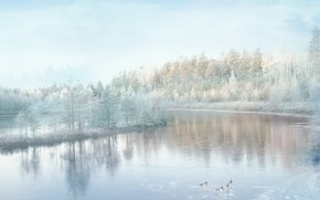 Picture winter, frost, forest, snow, lake, shore, duck, pond