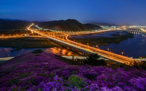 Picture road, flowers, night, bridge, the city, lights, river, hills, the slopes, the evening, Asia, pink, …